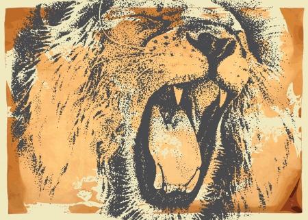 lion drawing: mano disegno vettoriale - ritratto del leone