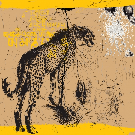 cheetah, the mystic grunge picture Vector