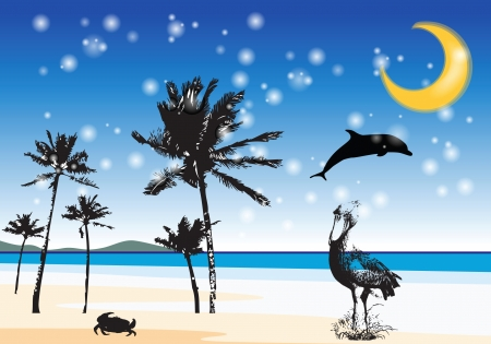 still life illustration with animals - the night and the beach Stock Vector - 15973304
