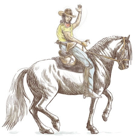 draft horse: cowboy on horseback