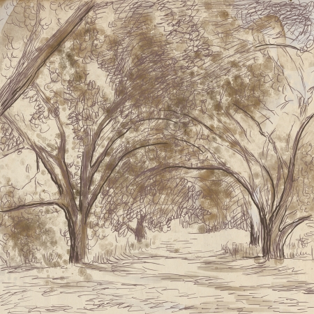 tree drawing: Alley - An hand drawing illustration