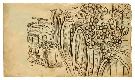 wine cellar: wine cellar  Illustration