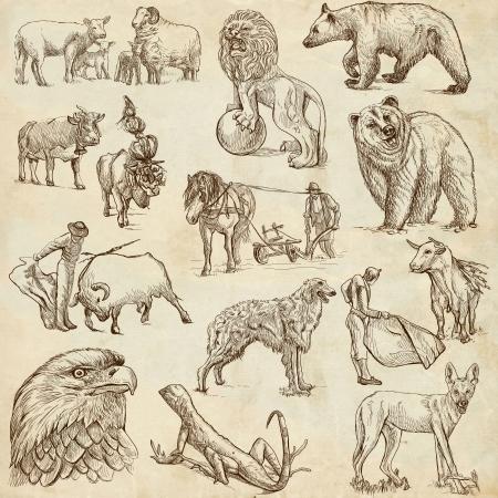 borzoi: Animals around the World  set no 3  - Collection of an hand drawn illustrations  Stock Photo