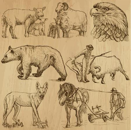 Animals around the World  set no  8  Vector