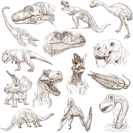 no 1: Dinosaurs  no 1 - white pack  - Collection of an hand drawn illustrations
