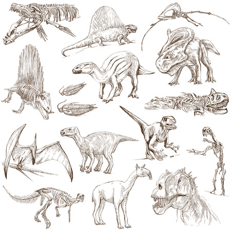 dinosaurus: Dinosaurs  no 2 - white pack  - Collection of an hand drawn illustrations Stock Photo