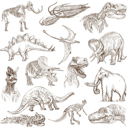 Dinosaurs  no 3 - white pack  - Collection of an hand drawn illustrations