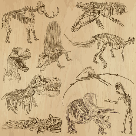 t bone: Dinosaurs no 5 - an hand drawn illustrations, vector set