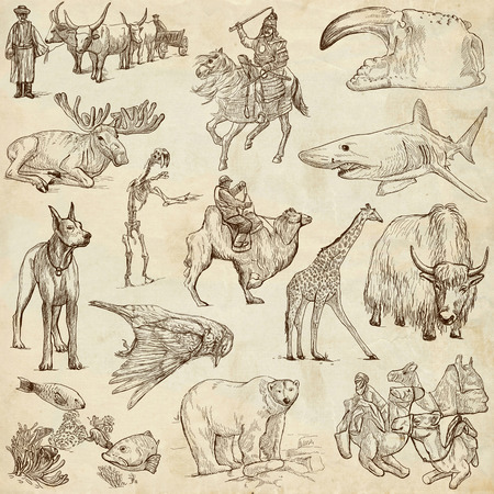 Animals around the world  collection no 8  - full sized hand drawn illustrations on old paper illustration