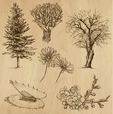 Flores y árboles de todo el mundo
