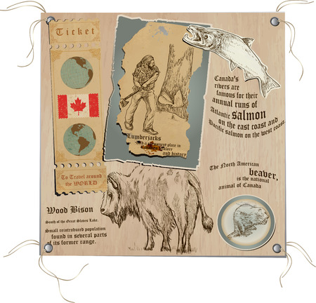 Hand drawn vectors from the series: Travels around the world - pictures of life in CANADA. On the topic: Life in the wild, Wildlife Vector