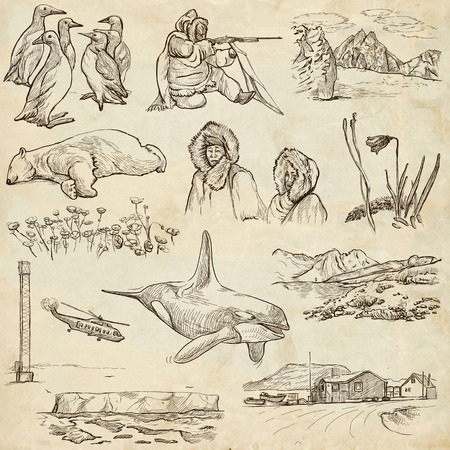 Travel series: POLAR REGIONS (Antarctica and Greenland) - Collection (no.1) of an hand drawn illustrations. Description: Full sized hand drawn illustrations drawing on old paper. illustration
