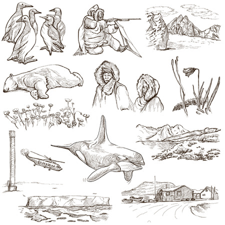 no1: Travel series: POLAR REGIONS (Antarctica and Greenland) - Collection (no.1) of an hand drawn illustrations. Description: Full sized hand drawn illustrations drawing on white background.