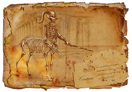Illustration of a series of legendary animals and monsters (skeleton): CENTAUR. An hand drawn and painted full sized illustration (Original). Version: Drawing on old vintage paper with text. Background: slightly blurry, Lines: sharp.