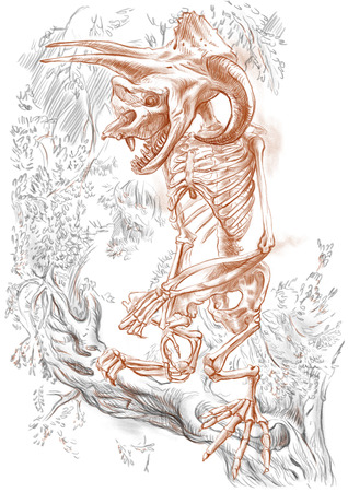 bestiary: Illustration of a series of legendary animals and monsters (skeleton): BIGFOOT. An hand drawn and painted full sized illustration (Original). Version: Drawing on white background.