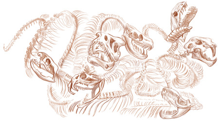 Illustration of a series of legendary animals and monsters (skeleton): Lernaean HYDRA .An hand drawn and painted full sized illustration (Original). Version: Drawing on white background.