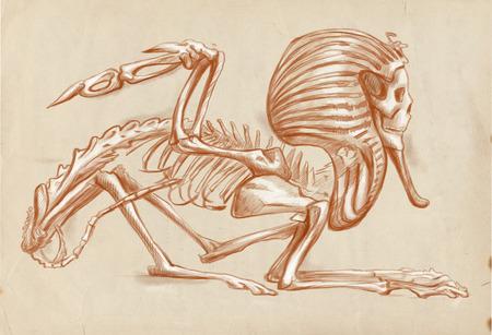 esoterismo: Ilustración de una serie de animales míticos y monstruos (esqueleto): Esfinge. Una mano dibujado y pintado ilustración de tamaño completo (Original). Versión: Gráfico de la mano en el papel viejo.