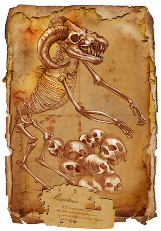 bestiary: Illustration of a series of legendary animals and monsters (skeleton): MINOTAUR. An hand drawn and painted full sized illustration (Original). Version: Drawing on old vintage paper with text. Background: slightly blurry, Lines: sharp.
