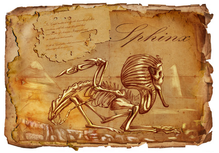 bestiary: Illustration of a series of legendary animals and monsters (skeleton): SPHINX. An hand drawn and painted full sized illustration (Original). Version: Hand drawing on old vintage paper with text. Background: slightly blurry, Lines: sharp.
