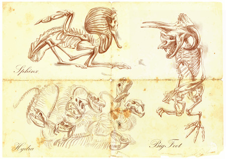 bestiary: An hand drawn vector illustration. Series of legendary animals and monsters (skeletons): SPHINX, BIGFOOT (Yeti), HYDRA. Drawings comprise at least three layers, the colored background is isolated. Editable in layers and groups. Illustration