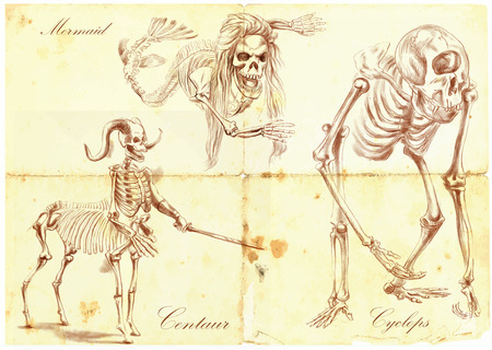 bestiary: An hand drawn vector illustration. Series of legendary animals and monsters (skeletons): MERMAID, CYCLOPS, CENTAUR. Drawings comprise at least three layers, the colored background is isolated. Editable in layers and groups.