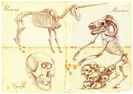 bestiary: An hand drawn vector illustration. Series of legendary animals and monsters (skeletons): UNICORN, CYCLOPS, MINOTAUR. Drawings comprise at least three layers, the colored background is isolated. Editable in layers and groups.