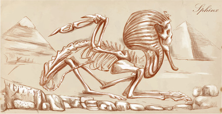 bestiary: An hand drawn vector illustration. Series of legendary animals and monsters (skeleton): SPHINX. Drawings comprise at least three layers of lines, the colored background is isolated. Easy editable in layers and groups. Illustration