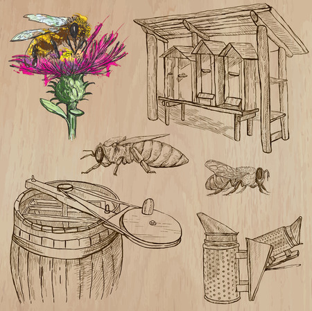 sweetshop: BEES, BEEKEEPING and HONEY. Collection of an hand drawn vector illustrations (pack no.6). Each drawing comprises of three or four layers of lines, the colored background is isolated.