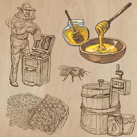miel de abeja: Abejas, apicultura y la miel. Colección de una dibujados a mano ilustraciones vectoriales (paquete no.5). Cada uno dispone de dibujo de tres o cuatro capas de líneas, el color de fondo se aísla.