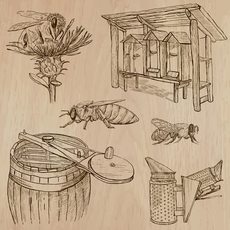 sweetshop: BEES, BEEKEEPING and HONEY. Collection of an hand drawn vector illustrations (pack no.7). Each drawing comprises of three or four layers of lines, the colored background is isolated. Illustration