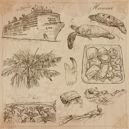 hawaii: Travel: HAWAII USA no.3. Collection of an hand drawn vector illustrations. Freehand sketching. Each drawing compris layers of lines. Colored background is isolated. Editable in layers and groups.