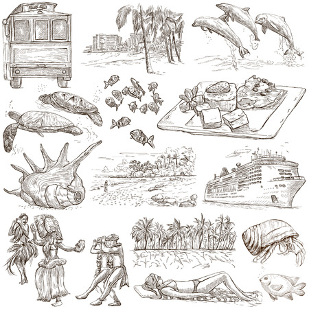 Travel series: HAWAII USA pack an no.1 Collection of hand drawn illustrations. Description: Full sized hand drawn illustrations freehand sketches. Drawing on white background.