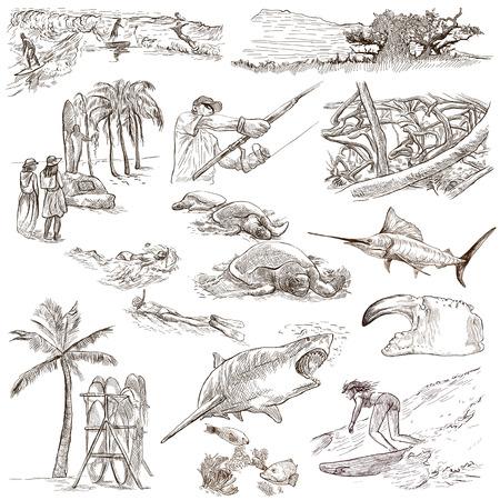 pez espada: Viaja serie: HAWAII EE.UU. empacar una colección no.3 de ilustraciones dibujadas a mano. Descripción: bocetos dibujados a mano ilustraciones a mano alzada de tamaño completo. Dibujo sobre fondo blanco.