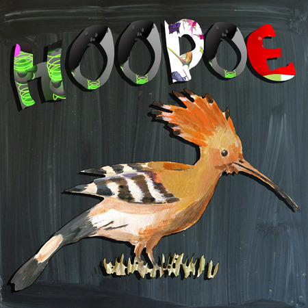 joyous life: An hand painted illustration (bird) and mixed media (alphabet and blackboard) illustration (blackboard is slightly blurred). BIRD - - HOOPOE Stock Photo