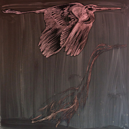 herons: Herons - An hand drawn illustration (post processing). (Red vintage variation on the blackboard.) Stock Photo