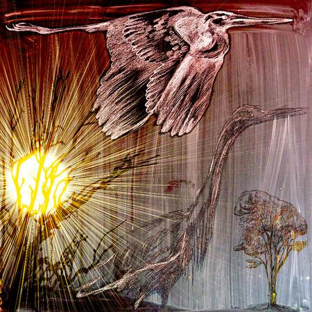 herons: Herons - An hand drawn illustration (post processing). (Sun and Trees.) Stock Photo