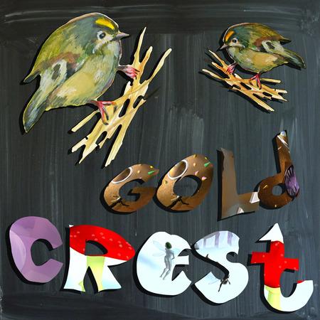 joyous life: An hand painted illustration (bird) and mixed media (alphabet and blackboard) illustration (blackboard is slightly blurred). BIRD - - GOLDCREST