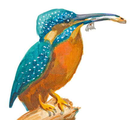 in common: An hand painted illustration on white - Bird, Common kingfisher (with a fish in the beak). (Original, acrylic painting) Stock Photo