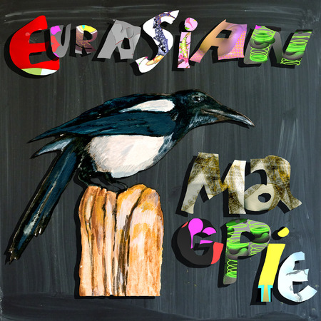 eurasian: An hand painted illustration (bird) and mixed media (alphabet and blackboard) illustration (blackboard is slightly blurred). BIRD - - EURASIAN MAGPIE