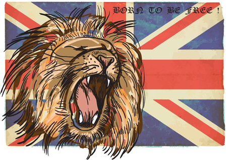 An hand drawn retro vector illustration, colored line art.  Freehand sketch of LION head. BRITISH LION. Vintage processing. Illustration