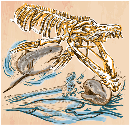 prehistory: An hand drawn vector - Underwater PREHISTORY. Tylosaurus skeleton, Shark and Giant Moray - colored line art. Vector is editable in groups and layers - freehand sketching.
