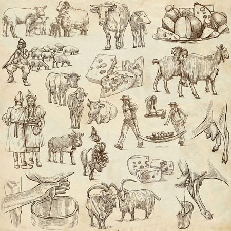 foodstuff: Cheese.Agriculture.Life of a farmer.Agricultural set.Collection of hand drawing illustrations.Pack of full sized hand drawn illustrations.Set of freehand sketches.Line art technique.Drawing on paper.