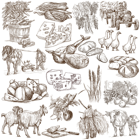sized: Agriculture.Farming.Life of farmer.Agricultural set.Collection of hand drawing illustrations.Pack of full sized hand drawn illustrations.Set of freehand sketches.Line art technique.Drawing on white.
