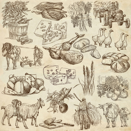 sized: Agriculture.Farming.Life of farmer.Agricultural set.Collection of hand drawing illustrations.Pack of full sized hand drawn illustrations.Set of freehand sketches.Line art technique.Drawing on paper.
