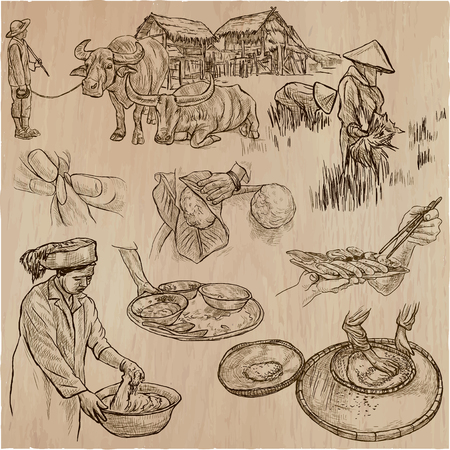 comprise: Agriculture - Life of a farmer. RICE crop. Collection of an hand drawn vector illustrations. Set of freehand sketches. Line art technique. Each sketch comprise a few layers of outlines.