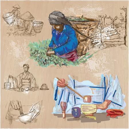 TÈ. Agricoltura. La vita di un contadino. Tè raccolta e lavorazione. Raccolta di un disegno a mano le illustrazioni. Confezione da un disegnati a mano illustrazioni vettoriali. Set di schizzi a mano libera.