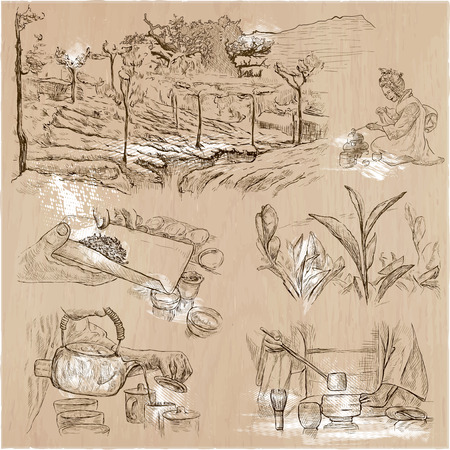 disruption: TEA. Agriculture. Life of a farmer. Tea harvesting and processing. Collection of an hand drawing illustrations. Pack of an hand drawn vector illustrations. Set of freehand sketches. Illustration