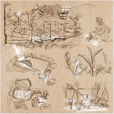 THÉ. Agriculture. La vie d'un agriculteur. La récolte du thé et de la transformation. Collection d'un illustrations de dessin à la main. Paquet d'une main tirée des illustrations vectorielles. Ensemble de croquis à main levée.