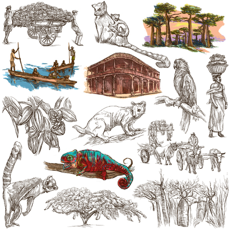 Travel MADAGASCAR. Pictures of Life - and Nature - of one of the largest Island in the World. Full sized hand drawing collection. Hand drawn illustrations. Pack of freehand sketches on white, isolated