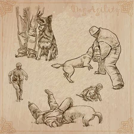 Dogs - Dog Training. Collection of an hand drawn vector illustrations. Freehand, line art sketching.
